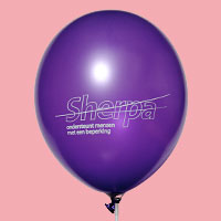 Bedrukte ballon met bedrijfslogo